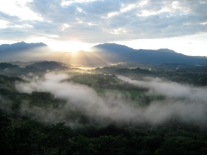 Alazan Sunrise
