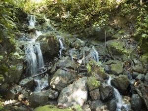 08b-waterfall-on-property2