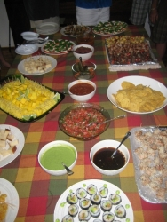 img_2889-dinnerpartyfood
