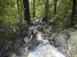 waterfall-looking-down